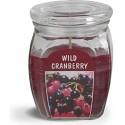BOLSIUS Aroma svíčka ve skle 120/92 Wild Cranberry